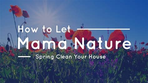 how to spring clean your house how to let mama nature spring clean your house the maids