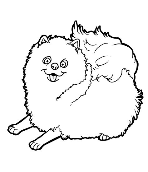pomeranian coloring pages az coloring pages