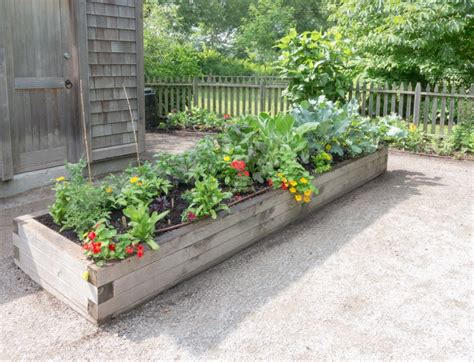 Raised Bed Gardening   Design Build Pros