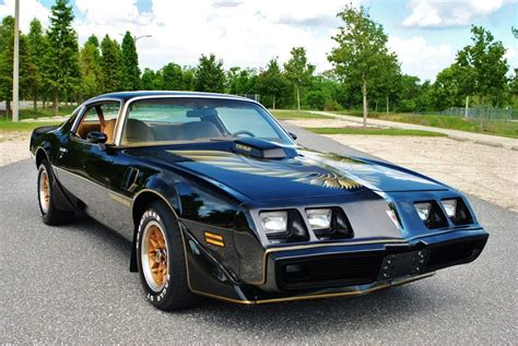 1979 pontiac trans am 1979 pontiac trans am for sale