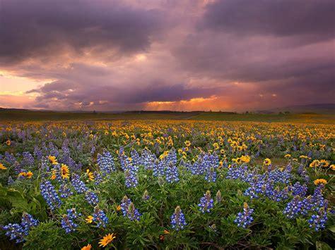 Indahnya Gan Gambar Foto foto indahnya pemandangan alam
