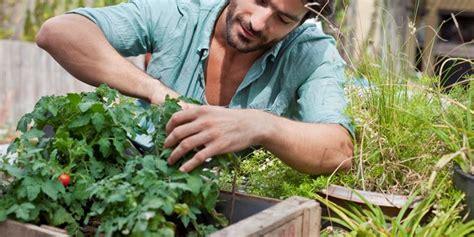 potatura piante da giardino potatura piante da giardino tecnica potatura