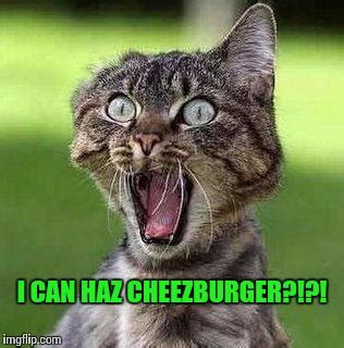 Cheezburger Meme Creator - finally imgflip