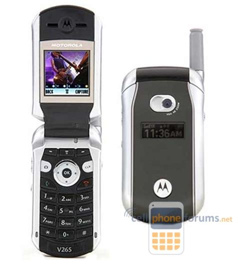 motorola  discussions cell phone forums