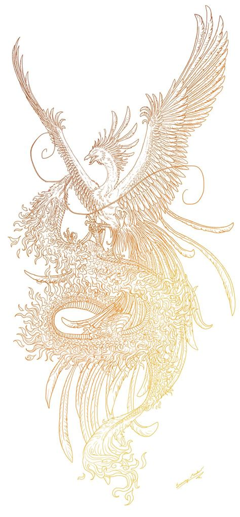dragon phoenix tattoo and lineart by sunima deviantart on