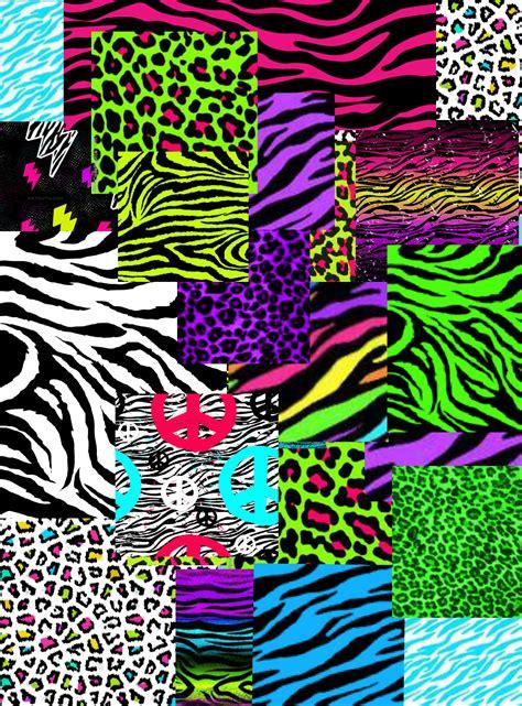 colorful zebra print colorful cheetah wallpaper wallpapersafari