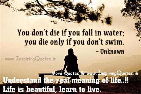 popular biography meaning famous quotes and meanings quotesgram