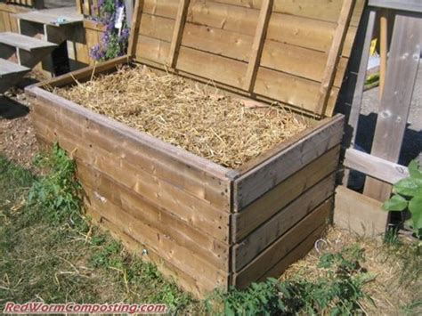 backyard composting bin better backyard composting week red worm composting