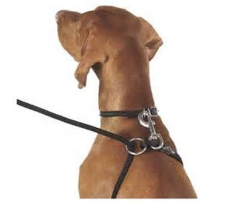 no pull harness for dogs weiss walkie leash harness in one safe no pull made in usa ebay