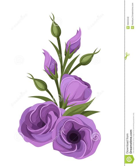purple lisianthus flowers stock vector image of bouquet