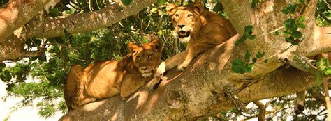 queen elizabeth national park uganda queen elizabeth national park queen elizabeth national park uganda queen elizabeth