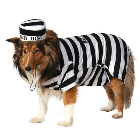 prison dogs prison costume with same day shipping baxterboo
