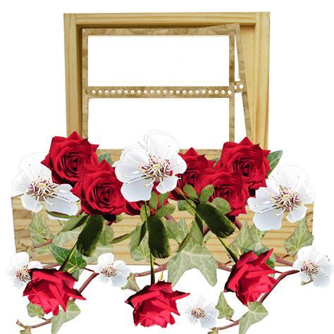 banco de im 193 genes las fotos m 225 s hermosas de rosas de imagenes de porta retratos con flores porta retrato de