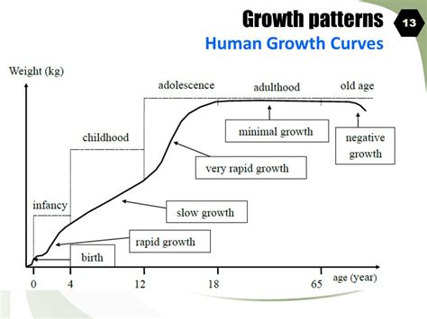history and pattern of human population growth growth patterns a sigmoid growth curve organism and