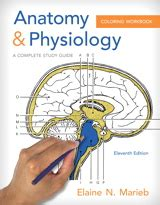 anatomy and physiology coloring workbook answers skin anatomy physiology coloring workbook a complete study