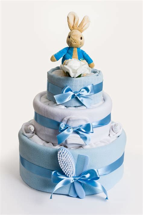 Baby Shower Cake Gift by Best 25 Nappy Cake Ideas On How To Make A