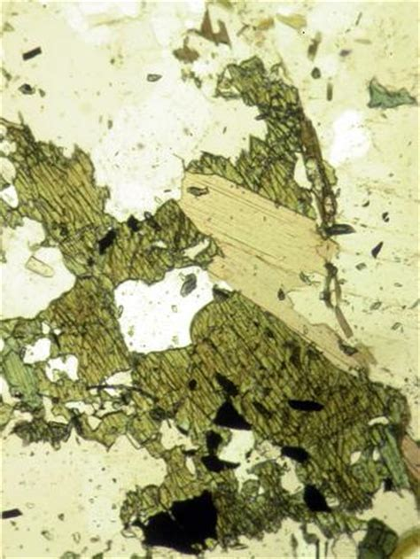 andesite thin section thin section gallery