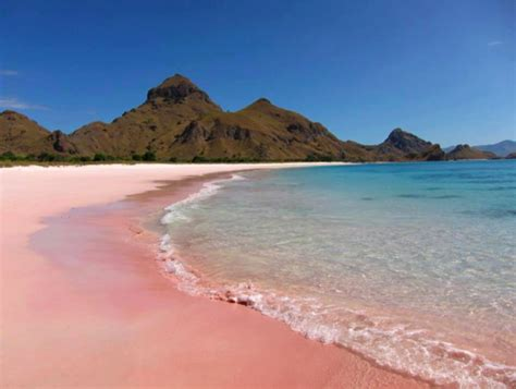 Bm 385 Zunnah 3in1 Pink the gallery for gt hawaii pink sand