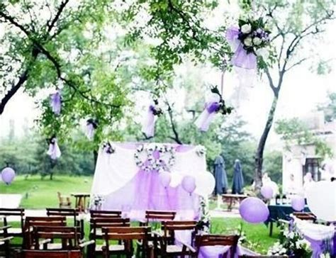 backyard wedding theme ideas 17 best images about september 2016 purple wedding theme on pinterest polka dot mini