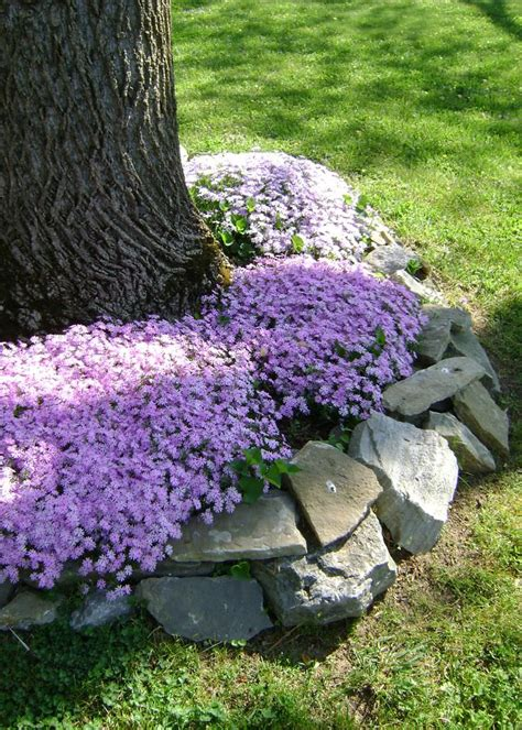 simple rock garden ideas 30 rock garden designs garden designs design trends