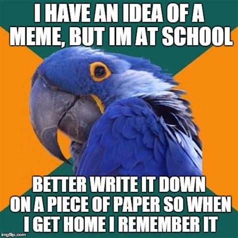 I Have An Idea Meme - paranoid parrot meme imgflip