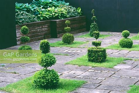 Railway Sleepers Swansea by Gap Gardens Courtyard With Yew Topiary Shapes And Raised
