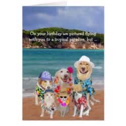 pets tropical paradise birthday cards zazzle
