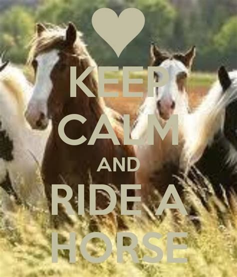 keep calm and ride a horse horses pinterest keep calm love it and love