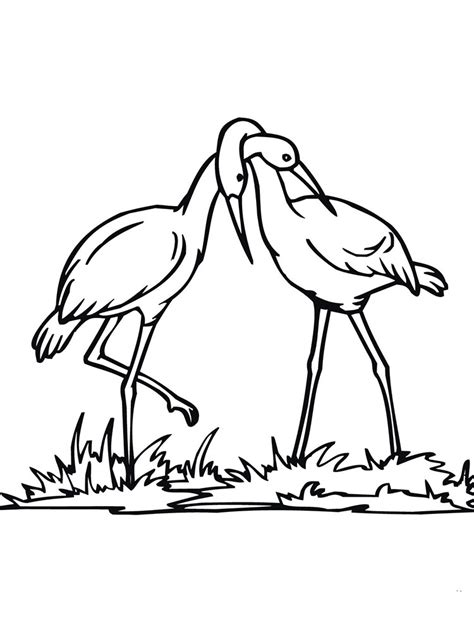 stork coloring pages    print