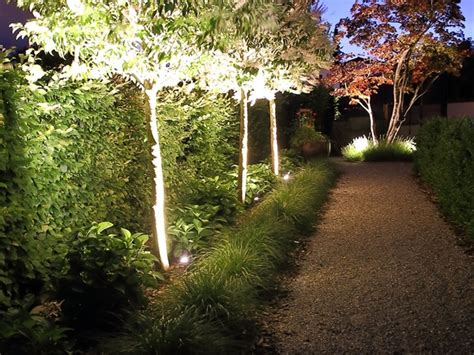 bäume im topf 5247 projekte aussenr 228 ume lichtfokus ag rapperswil sg