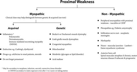 myotonic dystrophy pattern of weakness muscle diseases mimics and chameleons practical neurology