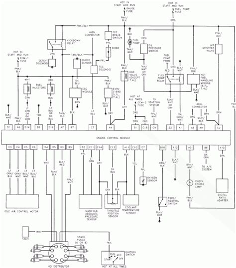 wiring diagram 94 chevy 350 engine tbi get free image about wiring diagram 350 tbi coolant diagram wiring diagram
