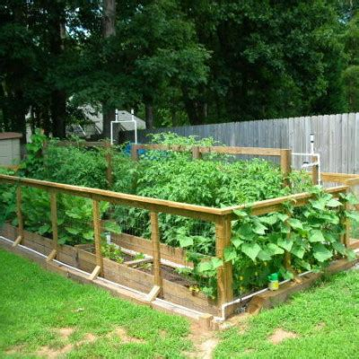 Backyard Gardening by The Vegetable Garden Ideas For Your Gardening Inspiration