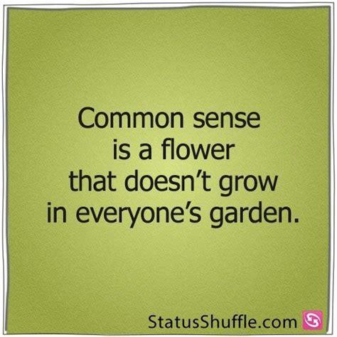 s day common sense media lack of common sense quotes quotesgram