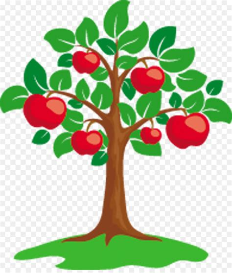 apple tree clipart apple tree clip fruit png 990 1153