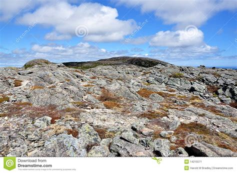 the rugged rugged terrain in newfoundland stock image image 14215571