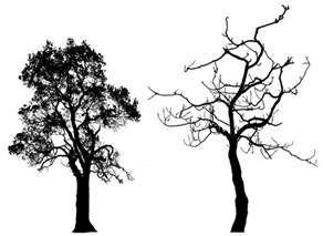 simple tree silhouette free download clip art free clip art on clipart library
