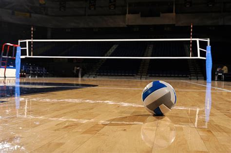 volleyball court images pictures  royalty