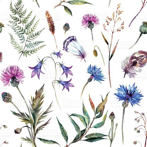 Design In Home Decoration drawn wildflower different flower pencil and in color