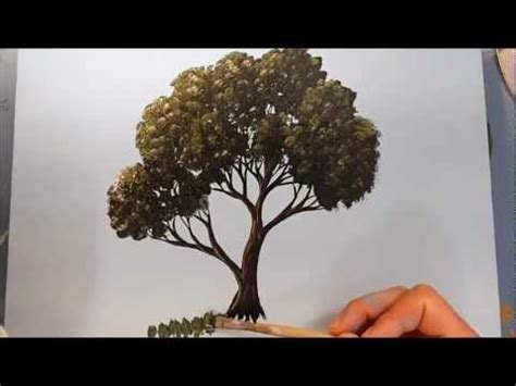 tutorial gambar pohon cara melukis pohon dengan acrillyc aqlam 20