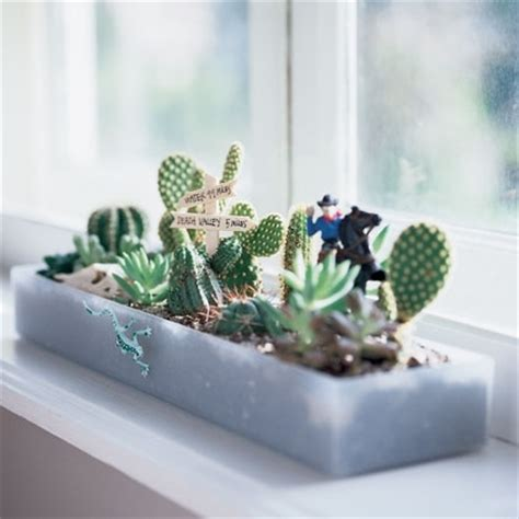 windowsill gardens pictures photos and images for
