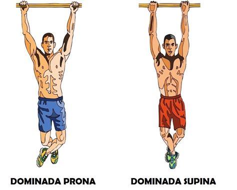 cadena cinetica dominada solicitaci 243 n muscular en dominadas pronas y supinas