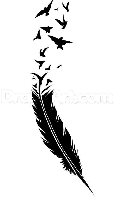 drawn feather black and white pencil and in color drawn