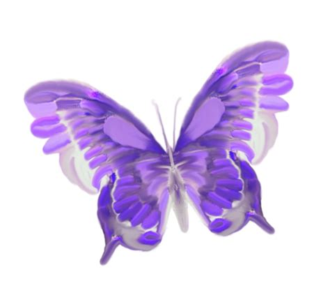 Blue Check Transparent Background Blue Butterfly Transparent Background Www Imgkid The Image Kid Has It