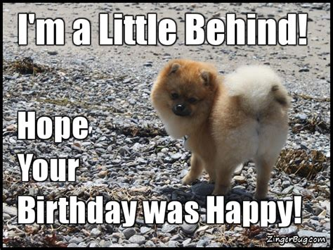 Belated Birthday Meme - belated birthday glitter graphics comments gifs memes