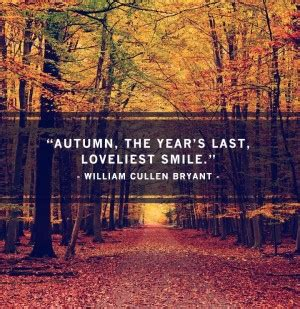 quotes about fall colors quotesgram catchy quotes for autumn quotesgram