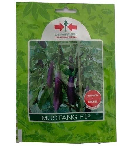 Benih Terong F1 jual benih terong mustang f1 1 100 biji panah merah