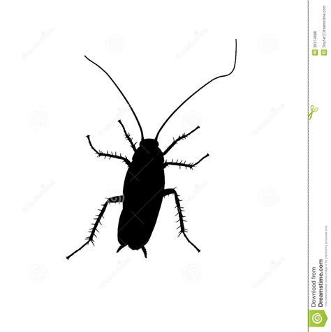 Cockroach Silhuette. Royalty Free Stock Photos - Image ...