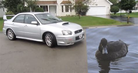 subaru rice subaru impreza wrx sti with duck call bov is both rice and
