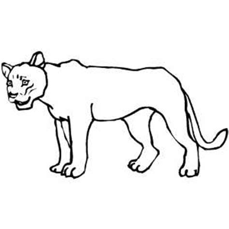 lioness face coloring pages coloring pages